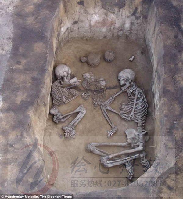 巨人骨骸有实物展示吗_鸿合交互平板实物展示_逆龙套和骸麒骨戒有冲突没